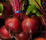 Beet Detroit Dark Red Heirloom, Container Friendly, 59 Days to Harvest, 100 Seeds Photo, new 2020, best price $4.99 review