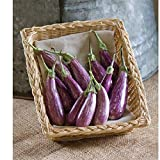 David's Garden Seeds Eggplant Fairy Tale OP3852 (Purple) 25 Non-GMO, Hybrid Seeds Photo, new 2020, best price $8.95 review