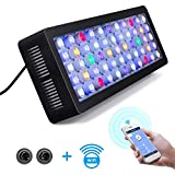 Lightimetunnel WiFi LED Aquarium Light, 165W WiFi + Dimmable Fish Tank Ligh Full Spectrum with Four Channels for Freshwater and Saltwater Marine Tanks LPS/SPS Photo, new 2020, best price $145.90 review
