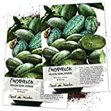 Seed Needs, Cucamelon/Mexican Sour Gherkin (Melothria scobra) Twin Pack of 65 Seeds Each Photo, new 2020, best price $8.85 review