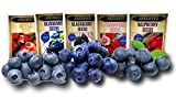 Fruit Combo Pack Raspberry, BlackBerry, Blueberry, Strawberry, Apple (Organic) 975+ Seeds UPC 600188190564 + 5 Free Plant Markers & 3 Free Packs of Blueberry Seeds Photo, new 2020, best price $7.42 review