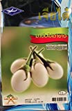Thai Organic White Round Eggplant Seed (260 Seeds). Photo, new 2020, best price $5.30 review