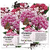 Seed Needs, Pink Swamp Milkweed (Asclepias incarnata) Twin Pack of 100 Seeds Each Untreated Photo, new 2020, best price $7.30 review