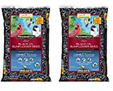 Pennington Select Black Oil Sunflower Seed Wild Bird Feed, 20 lbs (2 Pack) Photo, new 2020, best price $28.95 review