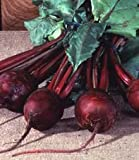 Beet Detroit Dark Red Great Heirloom Vegetable By Seed Kingdom BULK 1,200 Seeds Photo, new 2018, best price  review