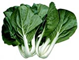 Cabbage PAK Choi White Stem Great Heirloom Vegetable BULK 1 Lb Seeds Photo, new 2018, best price $24.95 review