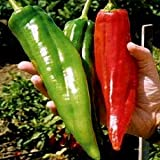 NuMex Big Jim Chili Pepper Seeds ► Organic NuMex Pepper Seeds (10+ seeds) Award Winning 12+ inches long! ◄ by PowerGrow System Photo, new 2019, best price $1.81 review