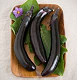 David's Garden Seeds Eggplant Orient Express D354QWS (Purple) 25 Hybrid Seeds Photo, new 2018, best price $8.45 review