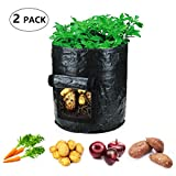 SZCTKlink Garden Planter Bag (2-pack), 7 Gallon Potato Bags for Growing Potatoes Vegetables Garden Potato Grow Bag Vegetables Planter Bags with Handles and Access Flap Photo, new 2018, best price $24.99 review