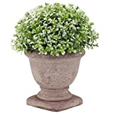 Artificial Potted Plants,6