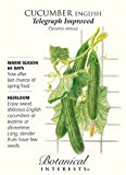 English Telegraph Improved Cucumber - 20 Seeds - Botanical Interests Photo, new 2018, best price $1.90 review