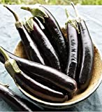 David's Garden Seeds Eggplant Little Finger TC3021 (Purple) 50 Non-GMO, Organic Seeds Photo, new 2020, best price $7.95 review