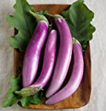 David's Garden Seeds Eggplant Orient Charm D2201PLY (Purple) 25 Hybrid Seeds Photo, new 2018, best price $8.45 review
