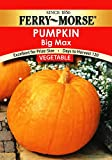 Ferry-Morse Pumpkin - Big Max Seeds Photo, new 2018, best price $5.36 review