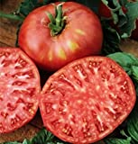Organic Pink Ponderosa Heirloom Tomato Seeds - Large Tomato - One of the Most Delicious Tomatoes for Home Growing, Non GMO - Neonicotinoid-Free. Photo, new 2018, best price $8.99 review