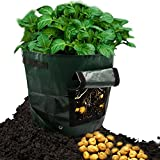 Amerzam 2-Pack 7 Gallon Garden Potato Grow Bag Vegetables Planter Bags with Handles and Access Flap for Grow Vegetables: Potato, Carrot & Onion Photo, new 2019, best price $19.99 review