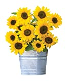Burpee Sunny Bunch Sunflower Seeds 25 seeds Photo, new 2019, best price $8.49 review