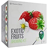 Exotic Fruits Growing Kit - Everything Included to Easily Grow 4 Unique Fruits - Strawberries, Goji Berries, Honeydew, Watermelon + Moisture Meter Photo, new 2020, best price $34.99 review