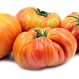 Hillbilly Tomato Seeds (30+ Organic Seeds) - Produces Rare, Beautiful & Delicious 1-2lb Heirloom Fruits - Hillbilly Seeds Photo, new 2018, best price $1.89 review