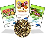 Wildflower Seeds Bulk Perennial Packets - 8 BONUS Gardening eBooks - 87,000 Open-Pollinated, Non-GMO, No Fillers, Annual, Flower Seed For Fall Planting, Bees, Humming Birds, Butterflies, Pollinators Photo, new 2020, best price $15.99 review