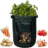 Kadaon 2-Pack 7 Gallon Garden Potato Grow Bag Vegetables Planter Bags with Handles and Access Flap for Potato, Carrot & Onion Photo, new 2018, best price $39.99 review