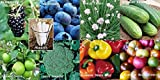 Fruit Veggie Combo Pack Chives, Blackberry, Blueberry, Pepper, Tomato, Broccoli, Cucumber (Organic) 1095+ Seeds 650327337350 + 8 Free Plant Markers Photo, new 2018, best price $6.29 review