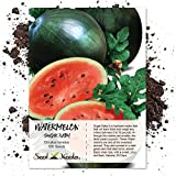 Package of 100 Seeds, Sugar Baby Watermelon (Citrullus lanatus) Seeds by Seed Needs Photo, new 2019, best price $3.85 review