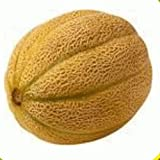 Everwilde Farms - 50 Honey Rock Melon Seeds - Gold Vault Jumbo Seed Packet Photo, new 2018, best price $2.50 review
