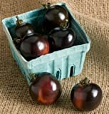 David's Garden Seeds Tomato Cherry Indigo Rose SL3616A (Black) 25 Organic Seeds Photo, new 2018, best price $9.45 review