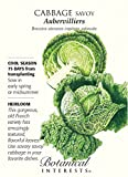 Aubervilliers Savoy Cabbage Seeds - 2 grams Photo, new 2018, best price $1.69 review