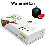 Garden Starter Kit (Watermelon) Grow a Garden by Seed. Germinate Seeds on Your Windowsill then Move to a Patio Planter or Vegetable Patch. Mini Greenhouse System Makes it Foolproof, Easy and Fun. Photo, new 2018, best price $9.99 review