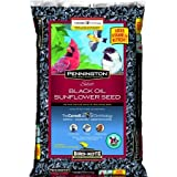 Pennington Select Black Oil Sunflower Seed Wild Bird Feed, 40 lbs (1, 40 lb) Photo, new 2019, best price $26.70 review