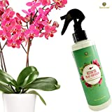 Orchid Spray Fertilizer - Plant Food Mist - Enhances Growth, Provides Food, Nutrients and Moisture - No Mixing or Diluting Needed, Ready to Use Formula - for Indoor Potted Plants & Terrariums Photo, new 2020, best price $7.95 review