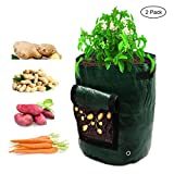 Amerzam 2-Pack 7 Gallon Garden Potato Grow Bag Vegetables Planter Bags with Handles and Access Flap for Grow Vegetables: Potato, Carrot & Onion Photo, new 2018, best price $19.99 review