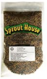 The Sprout House Veggie Queen Salad Mix Certified Organic Non-gmo Sprouting Seeds - Red Clover, Red Lentil, French Lentil, Daikon Radish, Fenugreek 1 Pound Photo, new 2018, best price $14.90 review