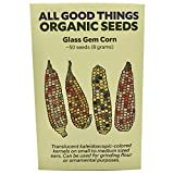 Glass Gem Corn Seeds (~50) by All Good Things Organic Seeds: Certified Organic, Non-GMO, Heirloom, Open Pollinated Seeds from the United States Photo, new 2019, best price $4.99 review