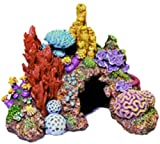 Exotic Environments Caribbean Living Reef Aquarium Ornament, Mini , 4-Inch by 3-1/2-Inch by 3-1/2-Inch Photo, new 2019, best price $9.99 review