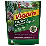 3.5 lb. Tree, Shrub and Evergreen Plant Food-Vigoro-124260 (1 Pack) Photo, new 2019, best price  review