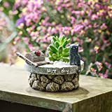 Cute Antique Finished Stone Mill and Cat Nice Day Tabletop Miniature Window Sill Resin Flower Cactus Succulent Pot Display Plants Planter Home Garden Decor Mother Day Gift Photo, new 2018, best price $15.00 review