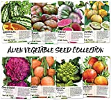 Alien Vegetable Seed Collection (8 Individual Seed Packets) Non-GMO Seeds by Seed Needs Photo, new 2019, best price $12.50 review