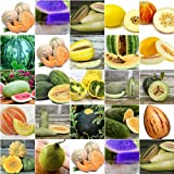 HEIRLOOM NON GMO Melon Mix 25 Seeds Photo, new 2018, best price $2.99 review