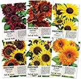 Crazy Sunflower Seed Packet Assortment (6 Individual Seed Packets) Non-GMO Seeds by Seed Needs Photo, new 2018, best price $21.90 review