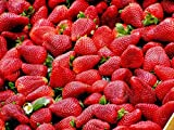 Strawberry Seeds 100 Sweet Organic Beauty Red Strawberry Fruit Climbing Seeds for Planting Strtisfied Berry Plant Seeds Photo, new 2019, best price $9.99 review