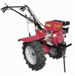 cultivator Fermer FM 1309 MD Photo and description