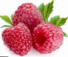 Photo Raspberries grade Brigantina